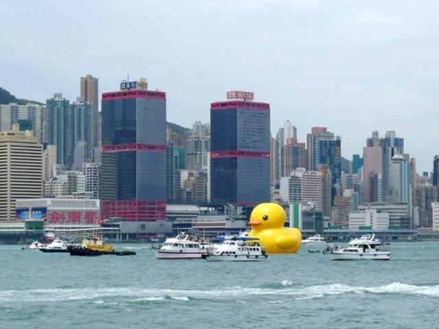 WTF : Patung Itik Gergasi Terbesar Di Dunia Terapung Di Perairan Hong ...