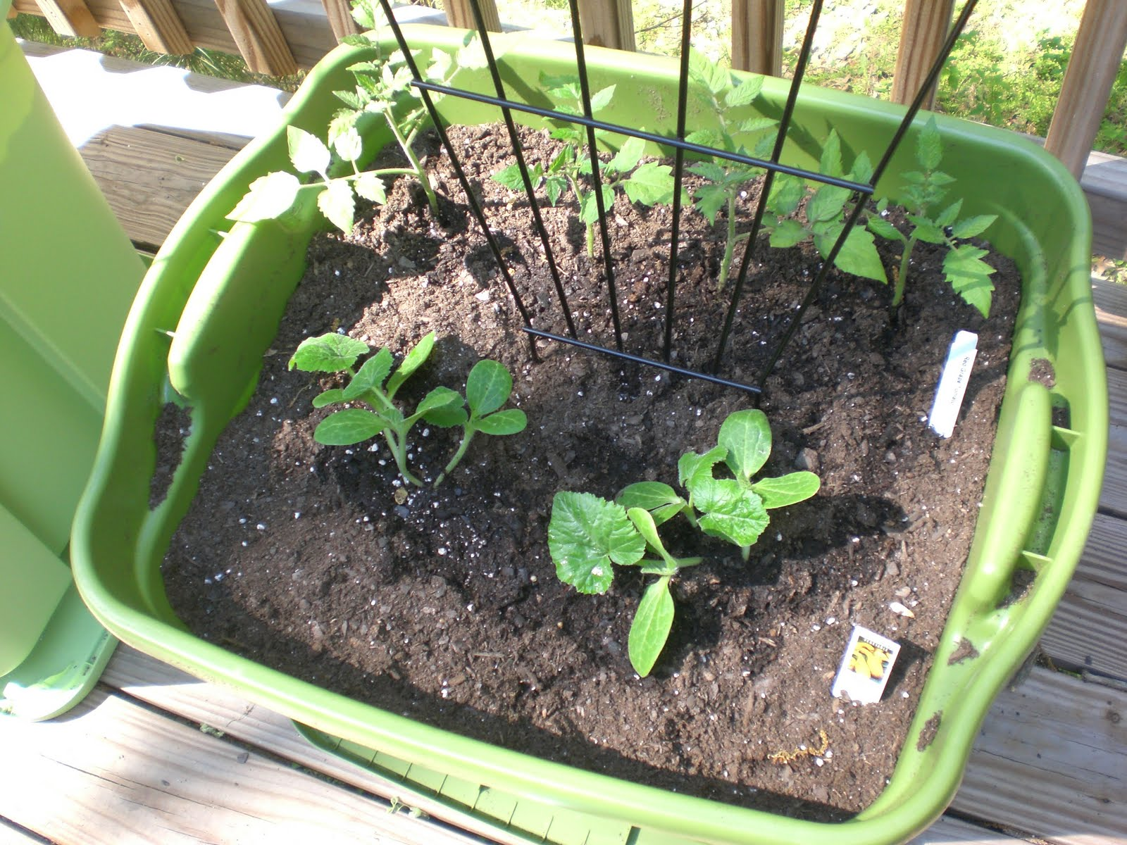 Back porch garden rubbermaid container garden - Soil for container vegetable gardening ...