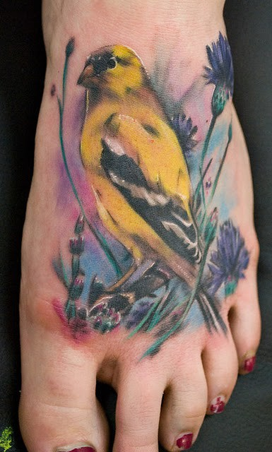 Finch Watercolor Tattoo Via Hummingbird Watercolor Tattoo By Ondrash