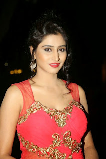 Shamili Transparent Red Saree Latest Unseen Pictureshoot (14).JPG