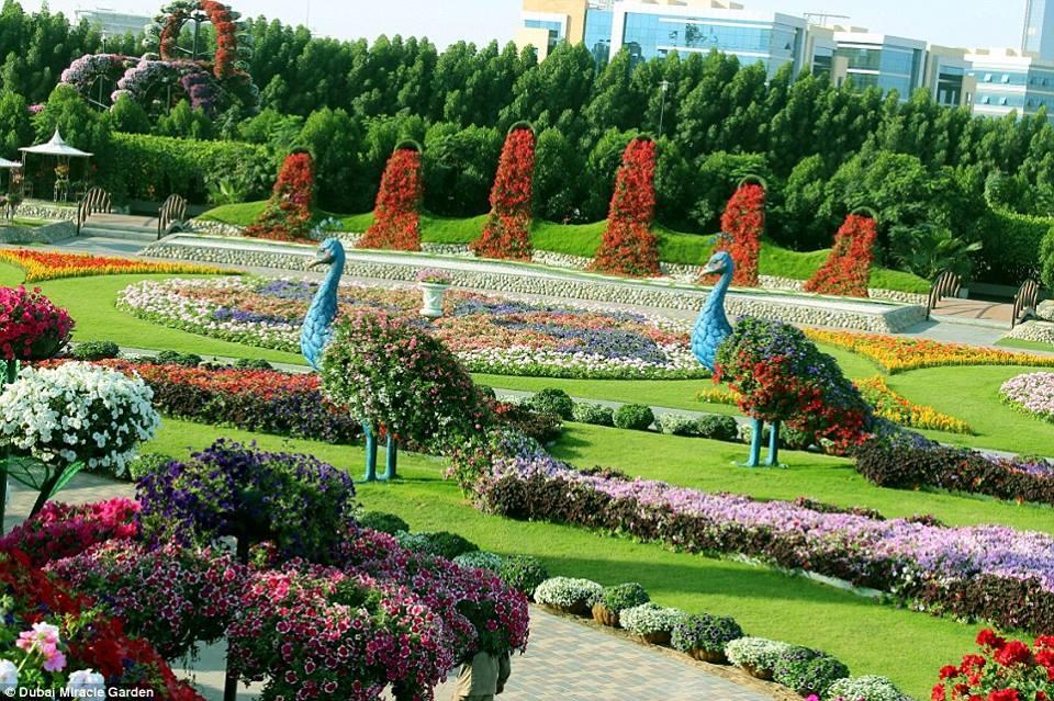 Le plus beau jardin du monde 45 millions de fleurs the most beautiful garden in the world with - Les plus beaux jardins du monde ...