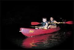 Puerto Rico Bio Bay Kayak Tours