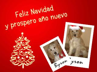 Feliz navidad y prospero año nuevo con fondo rojo