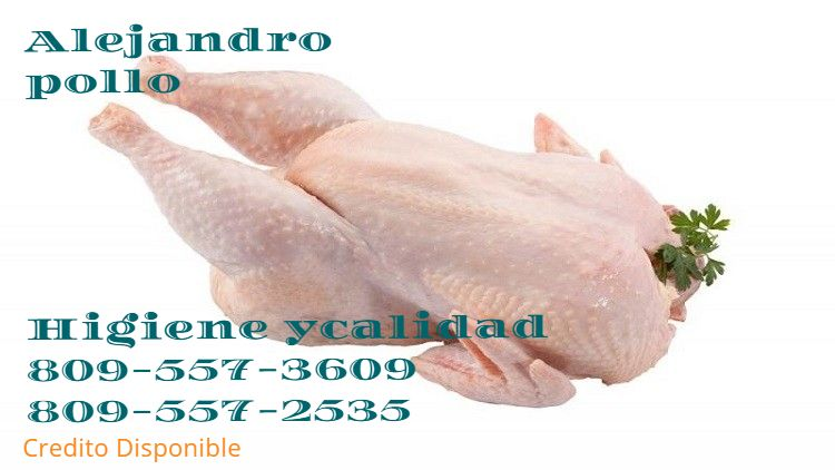 EL MEJOR POLLO DE SAN JUAN