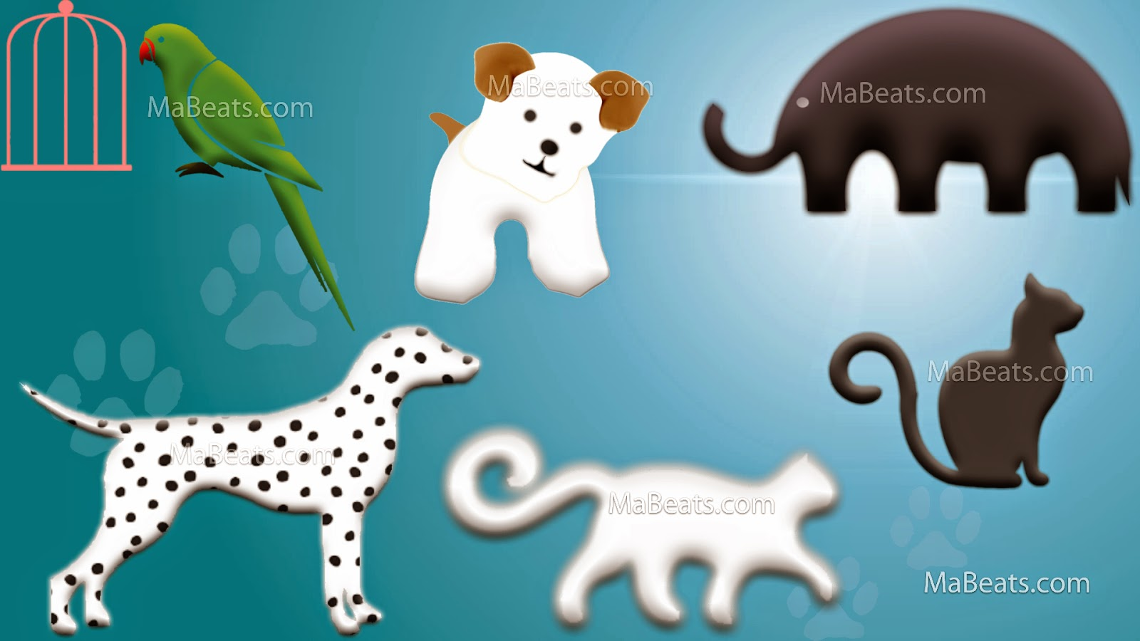 Survival of the smartest - Being pet, pet background,  cat, dog,Parrot, elephant, dalmatian,