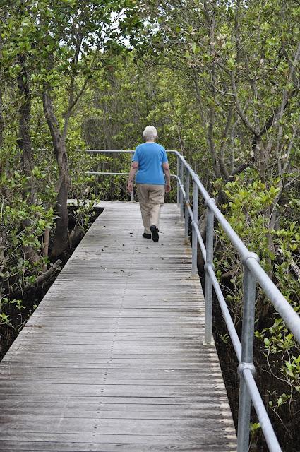 Carawah Reserve Walk