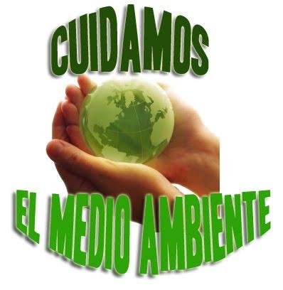 Como cuidar el medio ambiente taringa - Como humidificar el ambiente ...