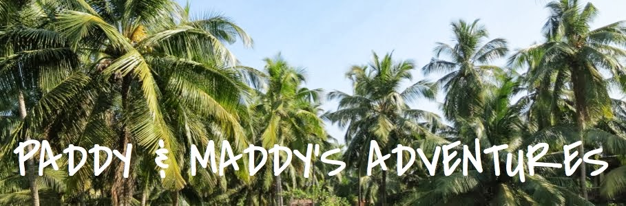 Paddy and Maddy's Adventures
