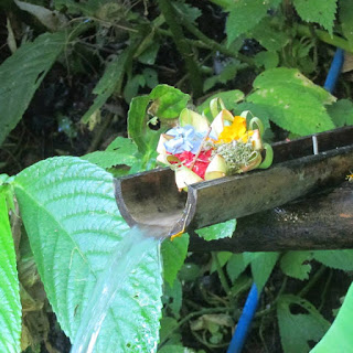 Balinese Incense