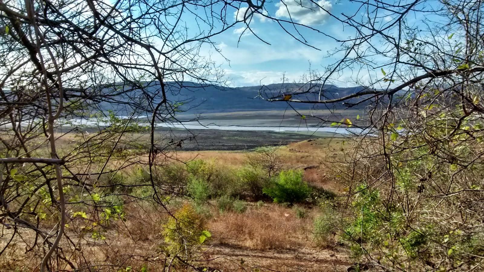 Tendencias y dinámica de la población en Nicaragua y su relación con la seguridad alimentaria