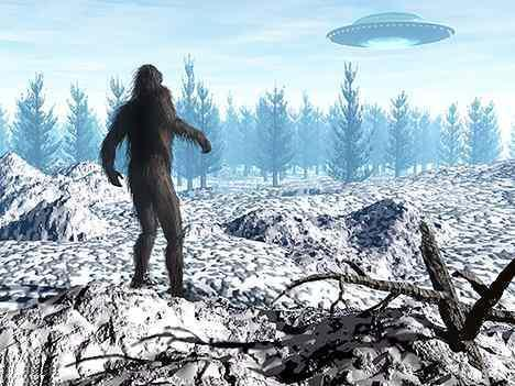 Bigfoot Sightings 2014