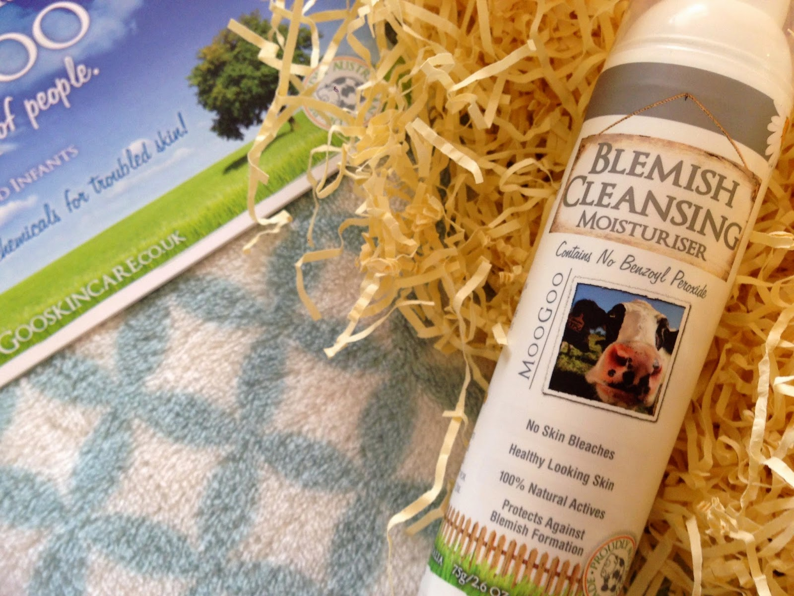 MooGoo Natural Chemical Free Blemish Cleansing Moisturiser Review