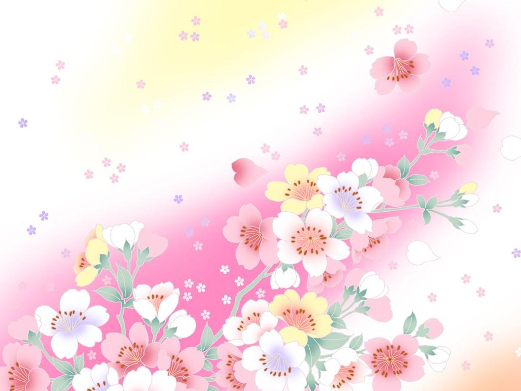 nice flowers pink wallpaper backgrounds pink wallpaper
