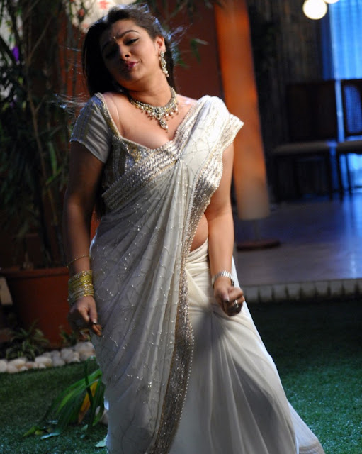 Actress Aarthi Agarwal White Saree Photos