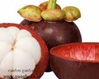 Khasiat Kulit Manggis untuk Mengobati Penyakit Mioma (Tumor Jinak)