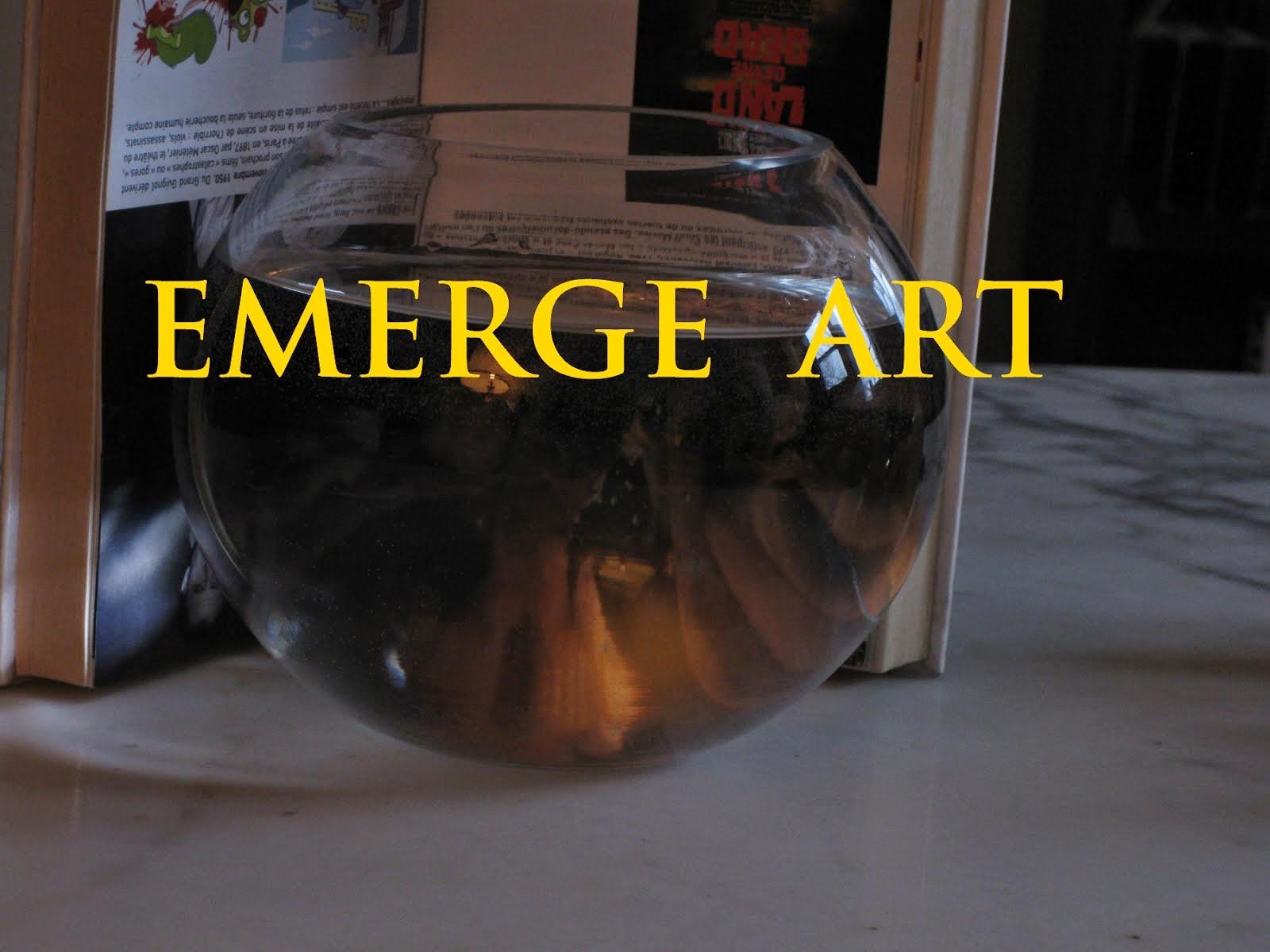 EMERGE ART avec le livre «Extrême: Esthétiques de la limite dépassée» de Paul Ardenne / Flammarion