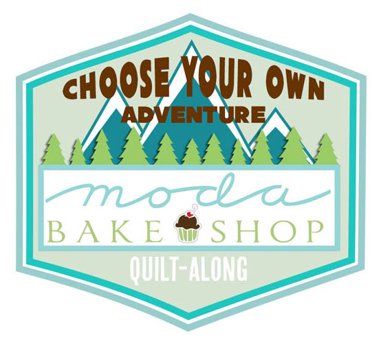 I Co-Hosted Choose Your Own Adventure Quilt-Along
