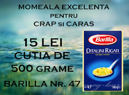 Pastele Barilla NR. 47