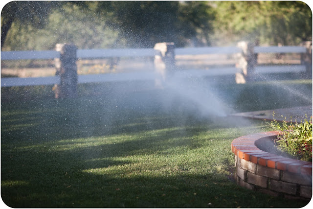 Sprinklers spraying grass at a Tucson Outdoor Park
