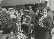 Diada de Sant Jordi a la pl.de Sant Jaume, 1936. AFB. Pérez de Rozas. (diada de sant jordi la pl)