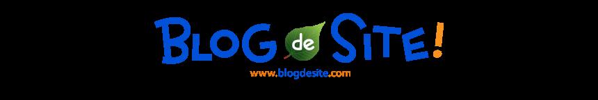 ブログでサイト!ブログでホームページ!