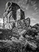 Check Out Spin's Website