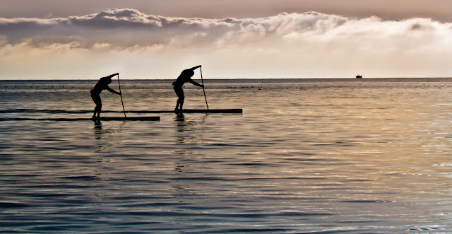 Paddle Surfing - Fine Digital Photography