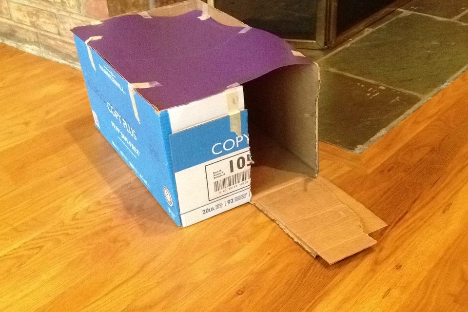 Recicla inventa c mo hacer una casa para perros - Como hacer una casa de perro ...