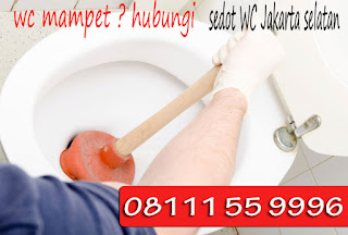 Harga Sedot WC Mampet Jakarta Selatan