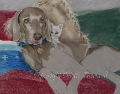 progression of a dog portrait in pastel by Colette Theriault