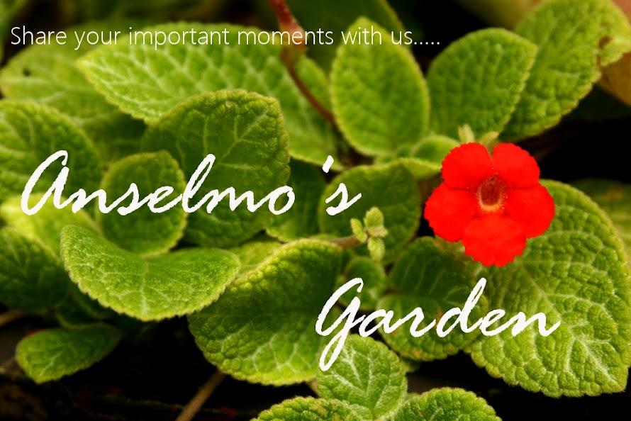 Anselmo's Garden