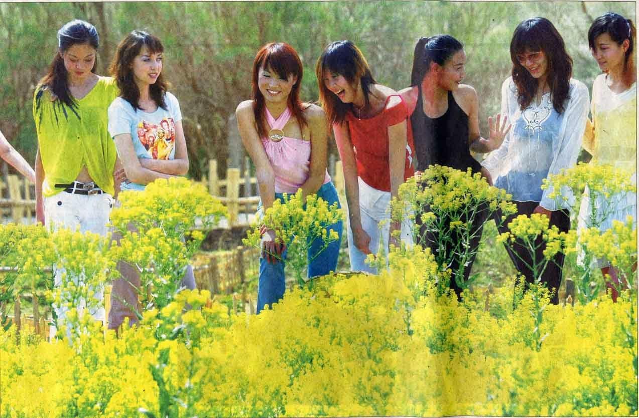 14 Choses savoir sur les touristes chinois