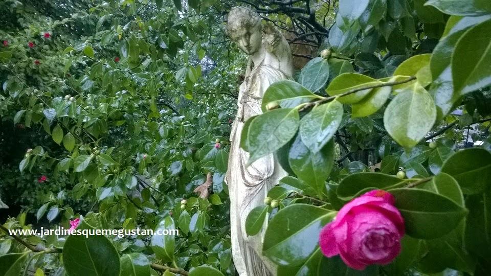Jardines Que Me Gustan El Jardin Botanico Atlantico De Gijon