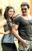 Sunil, Mannara Chopra Stills in RPA Prod Film-thumbnail-2