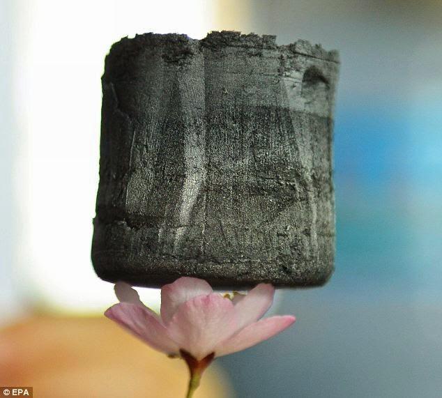 إيروجيل الكربون خفيف وهو على بتلات الزهرة
