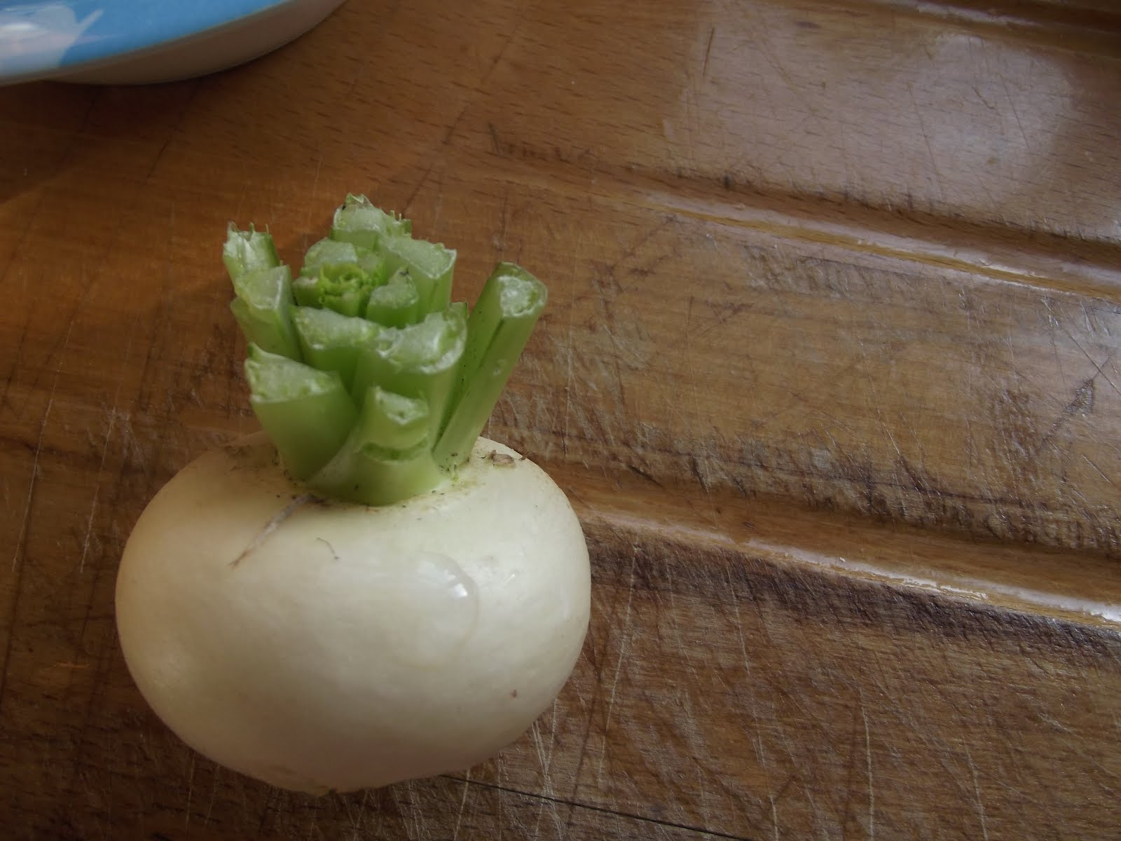 Nice little turnip!