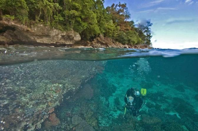 Diving in Banda Islands