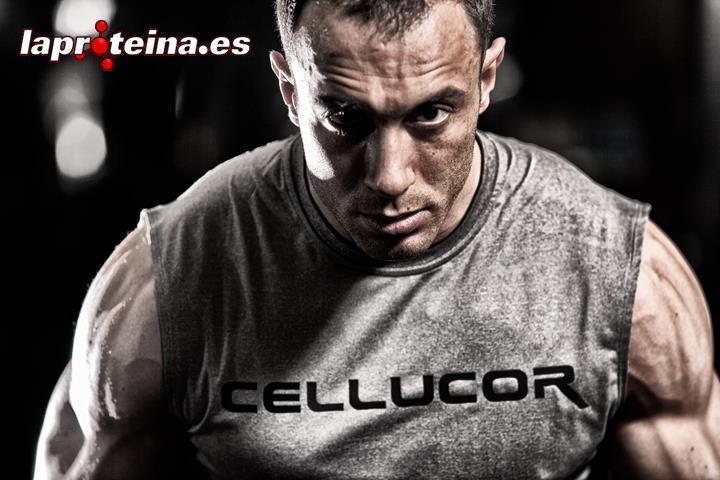 cellucor p6 anabolic stack extreme