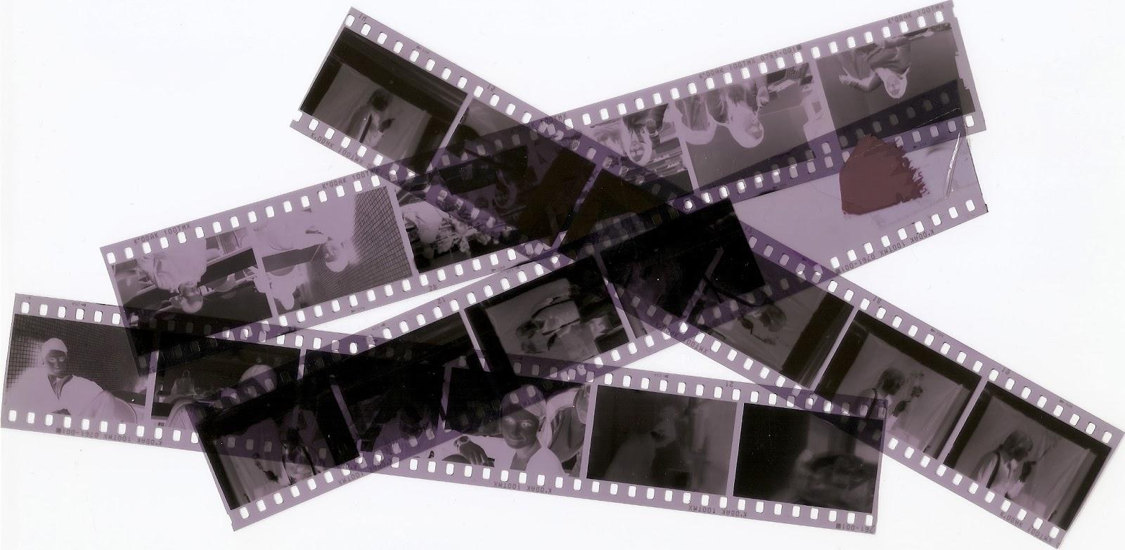 entiende clasificacion imagen reflexion: