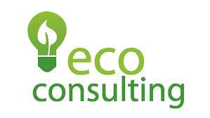 Consulting / Consultoria