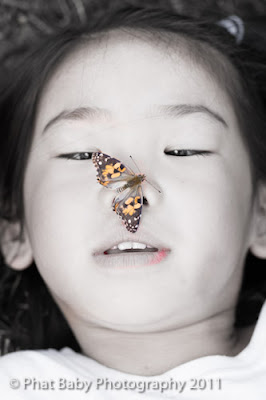 Baby Photography Butterflies