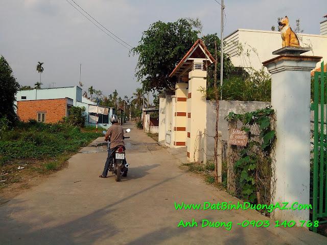 bán đất phú thọ thủ dầu một bd, ban dat phu tho tdm bd