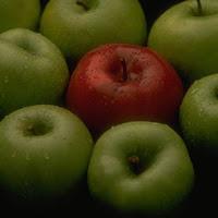 Cztery Jabłka