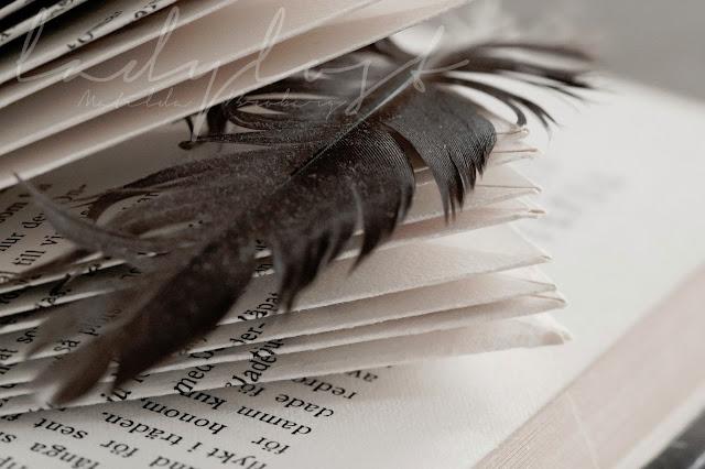 Matilda Broberg ladylost fotograf inredning svartvit kolonial bok fjäder