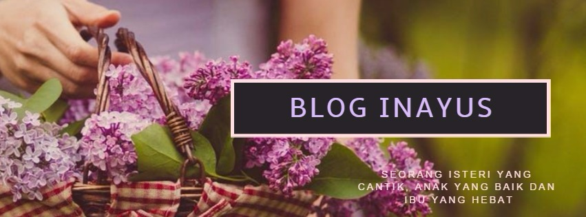 Blog Inayus