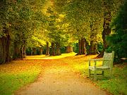 Fondo de pantalla de un lindo parque en la temporada de otoño con una . bello parque en la ã©poca de otoã±o