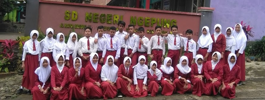 SDN NGEPUNG