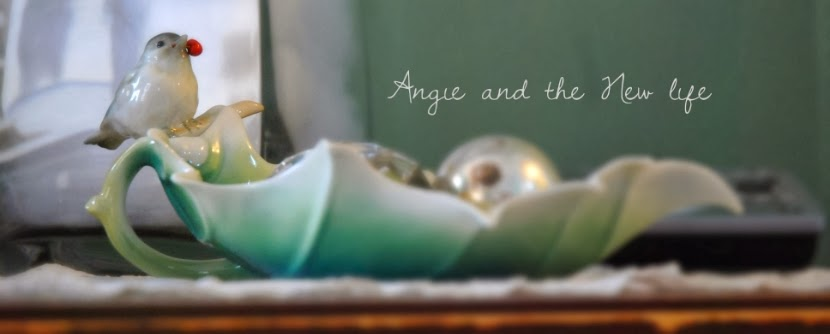 angie and the new life