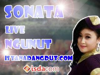 tersisih, dewi permatasari, sonata, sonata live tulungagung, 2013, artis dangdut cantik