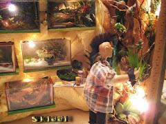 Skiddis Tropen-Reptilienhaus